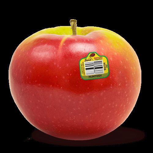 McIntosh (apple) - Alchetron, The Free Social Encyclopedia