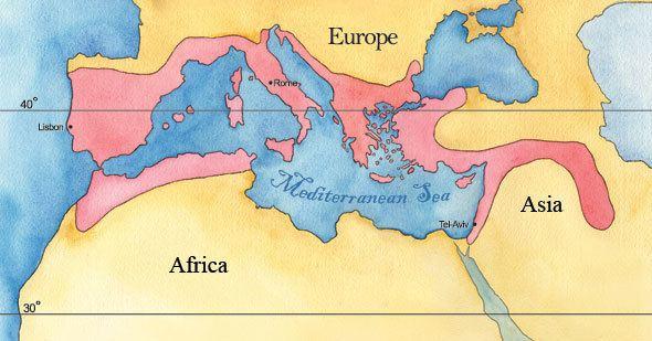 Mediterranean Basin Mediterranean Basin Landscape