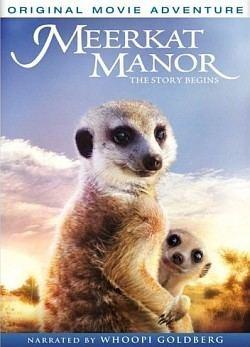 Meerkat Manor: The Story Begins Meerkat Manor The Story Begins Wikipedia