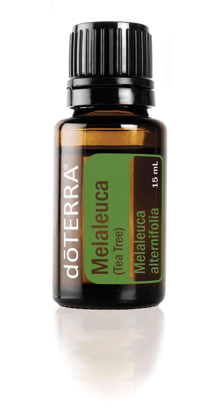 Melaleuca Melaleuca Tea Tree Oil doTERRA Essential Oils