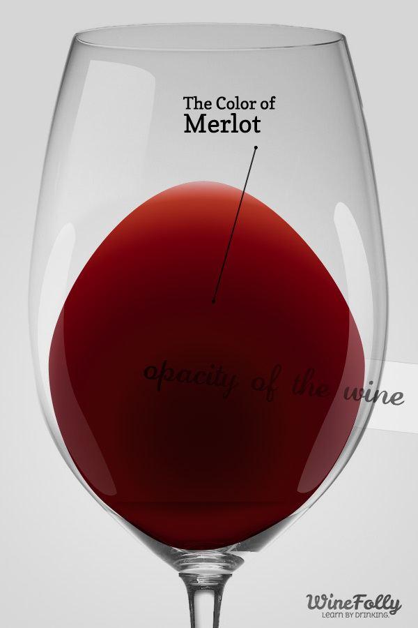 Merlot Guide to Merlot Wine Taste Regions and Food Pairing