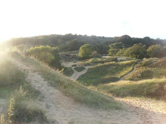 Merthyr Mawr Sand Dunes Merthyr Mawr Sand Dunes Bridgend Wales Top Tips Before You Go