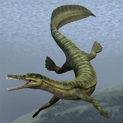 Mesosaurus Evidence Alfred Wegener Building a Case for Continental Drift