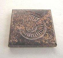 Metamorphism (album) httpsuploadwikimediaorgwikipediaenthumb3