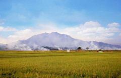 Metro, Lampung Beautiful Landscapes of Metro, Lampung