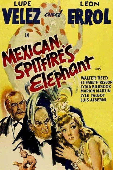 Mexican Spitfire's Elephant wwwgstaticcomtvthumbmovieposters50400p50400