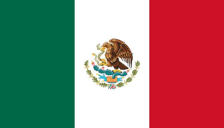 Mexico national football team 2010