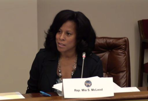 Mia McLeod Greenville district elects SCs first openlygay legislator GOP