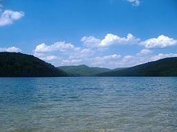 Michaux State Forest httpsuploadwikimediaorgwikipediacommonsthu