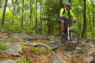 Michaux State Forest Michaux State Forest The Conservation Fund