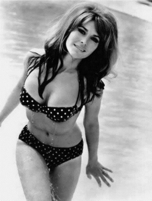 Michele Carey dirty dinkis Magee Michele Carey Elvis Women Michele