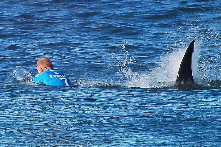 Mike Fanning Watch Surfer Mick Fanning Escape a Shark Attack During a