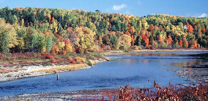 Miramichi, New Brunswick wwwwherewisemenfishcom203imagesEasternCanada