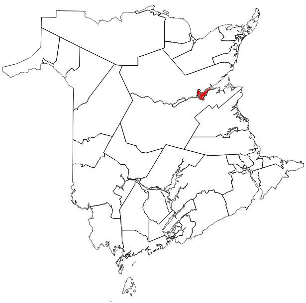 Miramichi (provincial electoral district)