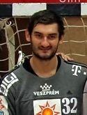 Mirko Alilović httpsuploadwikimediaorgwikipediacommons77