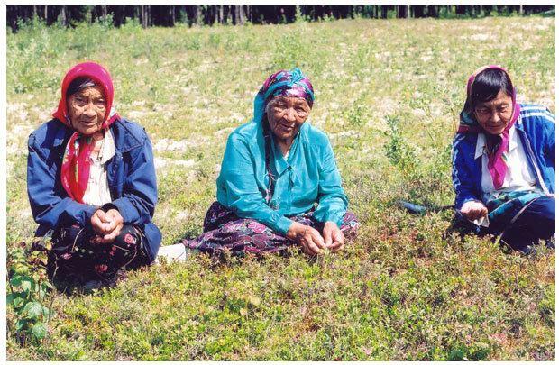Mishkeegogamang First Nation wwwmishkeegogamangcagalleryalbum2largeonejpg