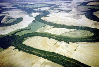 Mississippi Alluvial Plain Designing A Future For Arkansas Wildlife