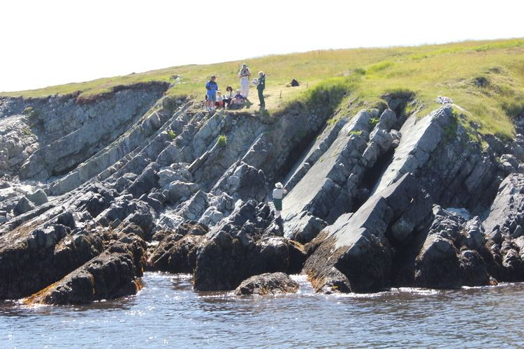 Mistaken Point, Newfoundland and Labrador Wilderness and Ecological Reserves Department of Environment and