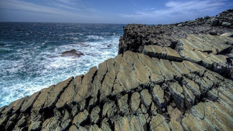 Mistaken Point, Newfoundland and Labrador Mistaken Point being evaluated in UNESCO World Heritage bid