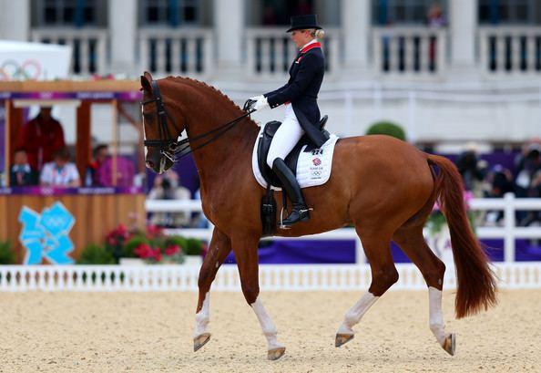Mistral Højris Mistral Hojris Photos Photos Olympics Day 11 Equestrian Zimbio