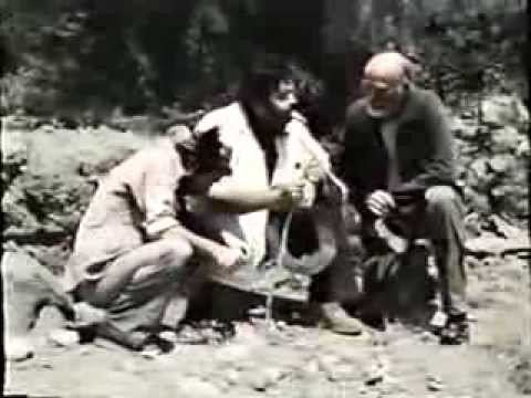 Mistress of the Apes Mistress of the Apes 1979 Full Movie YouTube