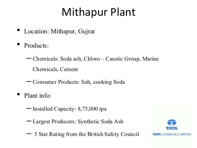 Mithapur Beautiful Landscapes of Mithapur