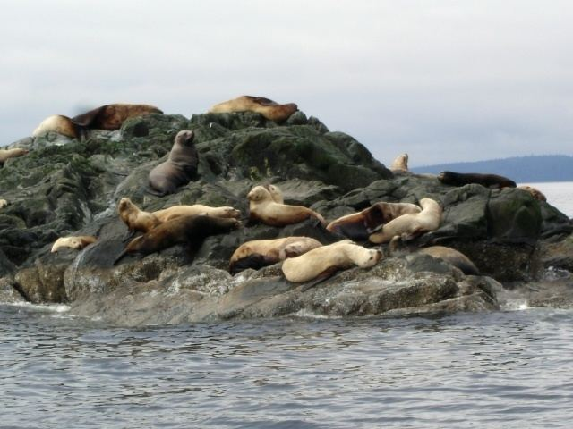 Mitlenatch Island Nature Provincial Park