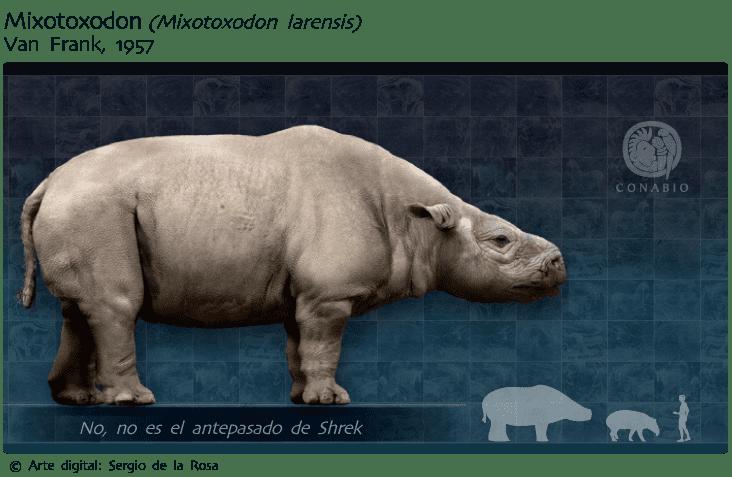 Mixotoxodon valentint Largest prehistoric animals Vol 1