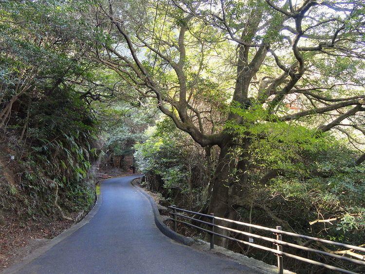 Miyajima Natural Botanical Garden