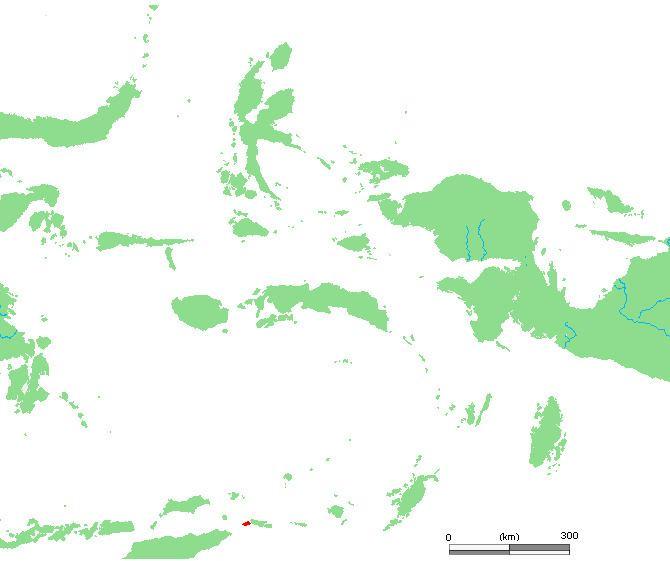 Moa (Indonesia)