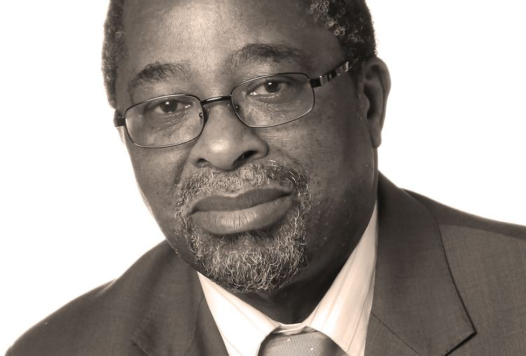 Moeletsi Mbeki Moeletsi Mbeki on SA39s good bad and nouveau riche Daily