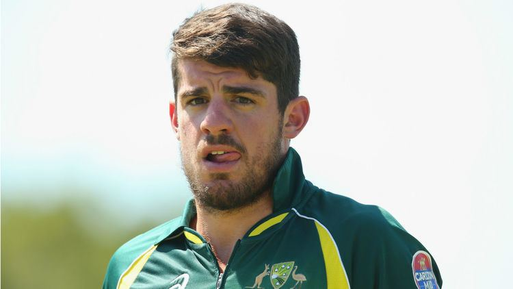 Moisés Henriques Cricket Australia call up Moises Henriques after Shane Watson