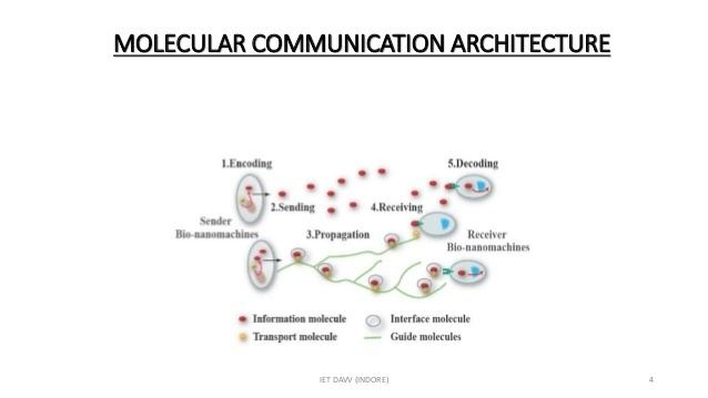 Molecular communication Molecular communication