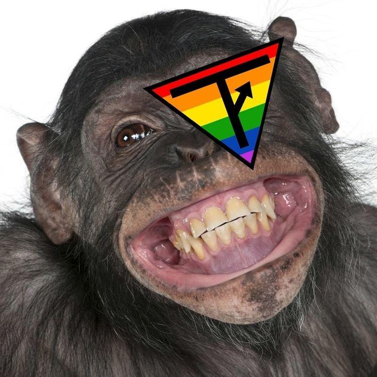 Monkey httpsyt3ggphtcomIXzYFNWU8UAAAAAAAAAAIAAA