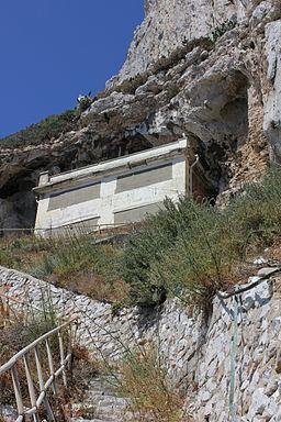 Monkey's Cave httpsuploadwikimediaorgwikipediacommonsthu