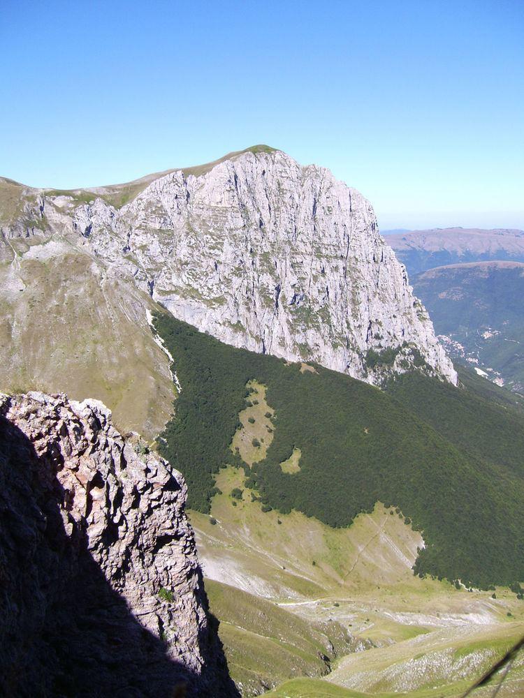 Monte Bove httpsuploadwikimediaorgwikipediacommonsthu