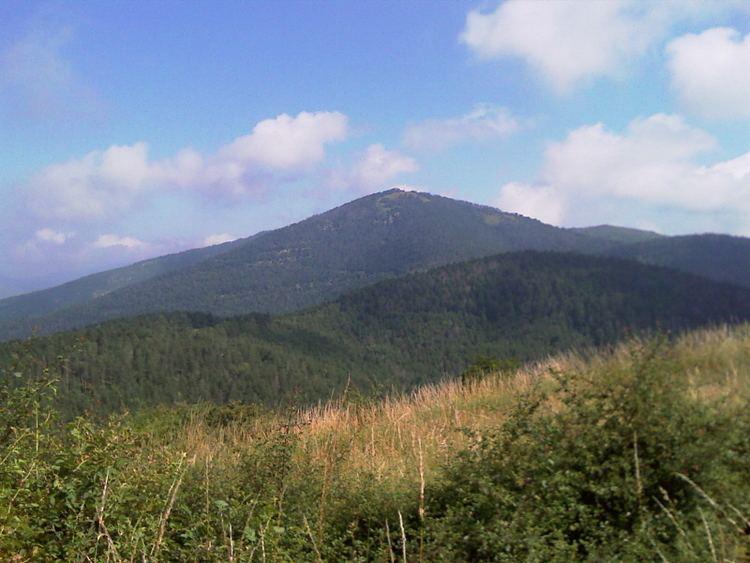 Monte Morello mountainbikefirenzexoomitimages20mountain20bi