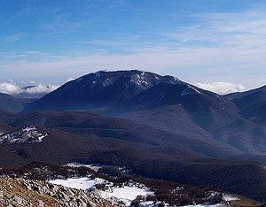 Monte Mutria httpswwwvienormaliitimagesfotocime1631mon