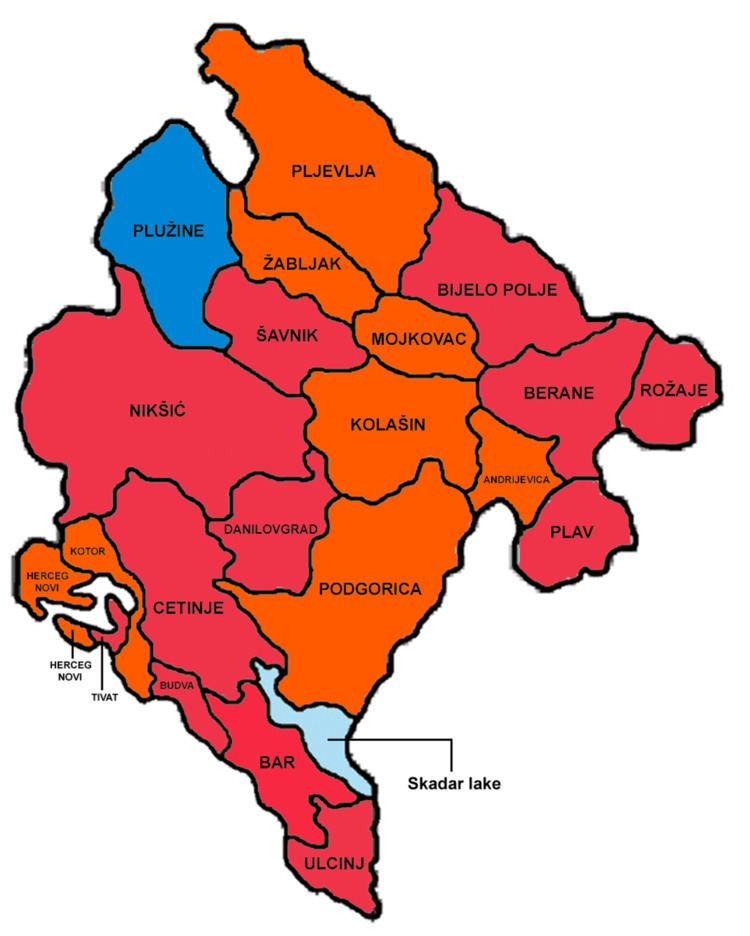 Montenegrin presidential election, 2008