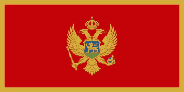 Montenegro at the World Aquatics Championships