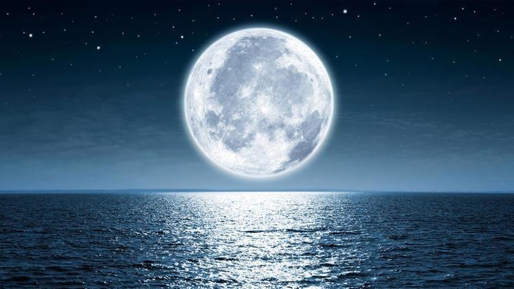 Moon moon abc7com