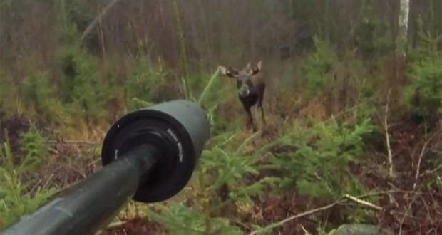 Moose Hunters movie scenes Crazy First Person Footage Captures Close Range Moose Kill Shot VIDEO
