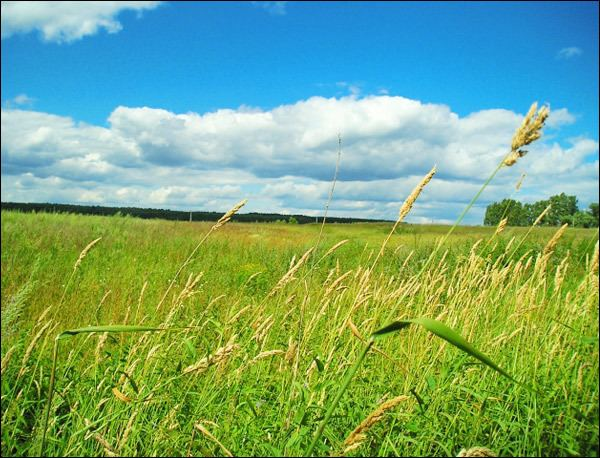 Mordovia Beautiful Landscapes of Mordovia