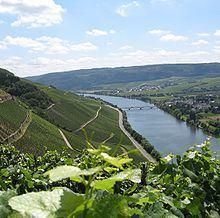 Moselle httpsuploadwikimediaorgwikipediacommonsthu