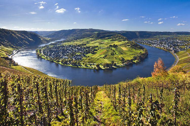 Moselle Valley alterraccmediaturobjimagesMoselleValley7jpg