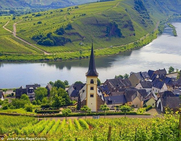 Moselle Valley Rieslings to be cheerful A marvellous meander up Germanys Mosel