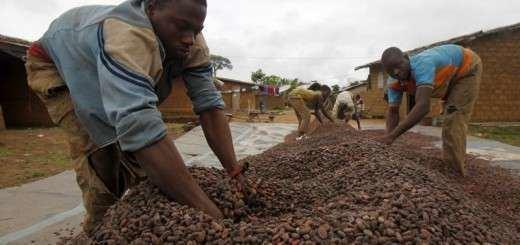 Moses Aliwa Moses Aliwa President of Cocoa association urge govts to encourage