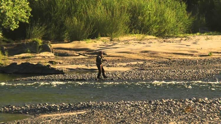 Motueka River httpsiytimgcomviimx9DZzlWDYmaxresdefaultjpg