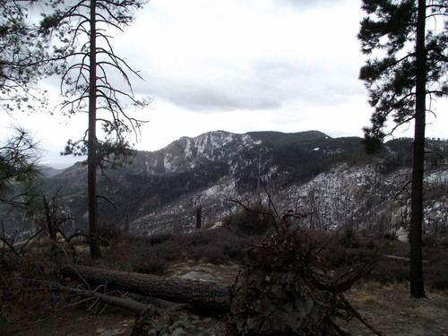 Mount Bigelow (Arizona) wwwsummitpostorgimagesmedium710519JPG