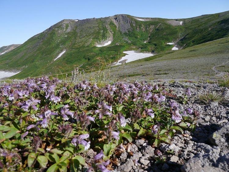 Mount Chūbetsu pdsexblogjppds12012081296f013809618175263jpg
